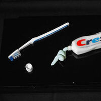 crest toothpaste by Robin Antar - search and link Sculpture with SculptSite.com