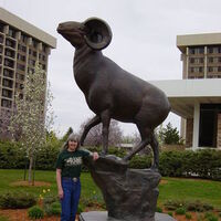 Ram Proud by Dawn Weimer - search and link Sculpture with SculptSite.com