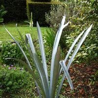 Phormium by Richard Warner - search and link Sculpture with SculptSite.com