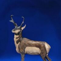 Pronghorn by James Marsico - search and link Sculpture with SculptSite.com