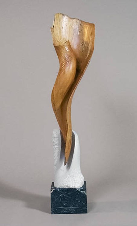 Spiral Form by Mark Carroll - search and link Sculpture with SculptSite.com