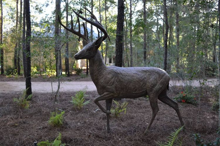 Wildlife Monuments - Magnolia Whitetails by Edd Hayes - search and link Sculpture with SculptSite.com