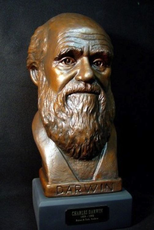 Charles Darwin by Robert Toth - search and link Sculpture with SculptSite.com