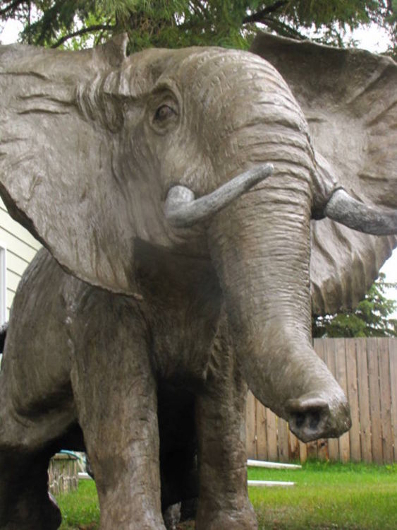 African Elephant by Edward Kitt - search and link Sculpture with SculptSite.com