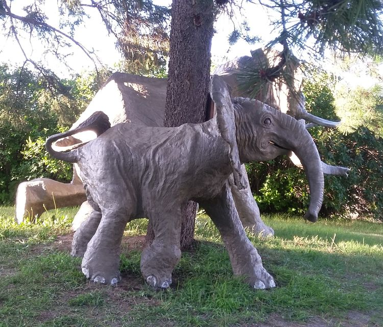 baby elephant by Edward Kitt - search and link Sculpture with SculptSite.com