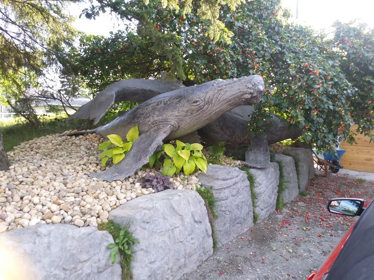 Humpback Whales by Edward Kitt - search and link Sculpture with SculptSite.com