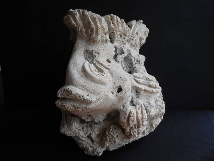 Coral Lion Fish by David Willis - search and link Sculpture with SculptSite.com
