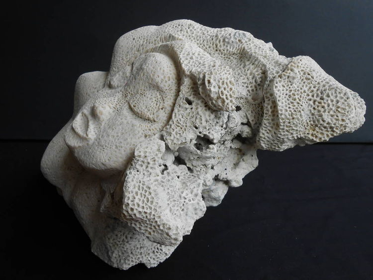 Nude From the Sea by David Willis - search and link Sculpture with SculptSite.com