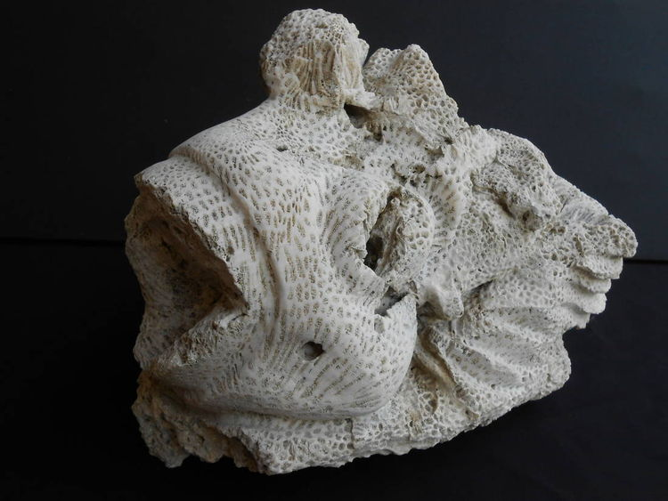 From the Deep by David Willis - search and link Sculpture with SculptSite.com