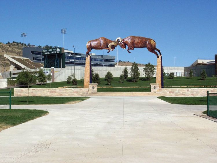 Rocky Mountain Rumble by Dawn Weimer - search and link Sculpture with SculptSite.com