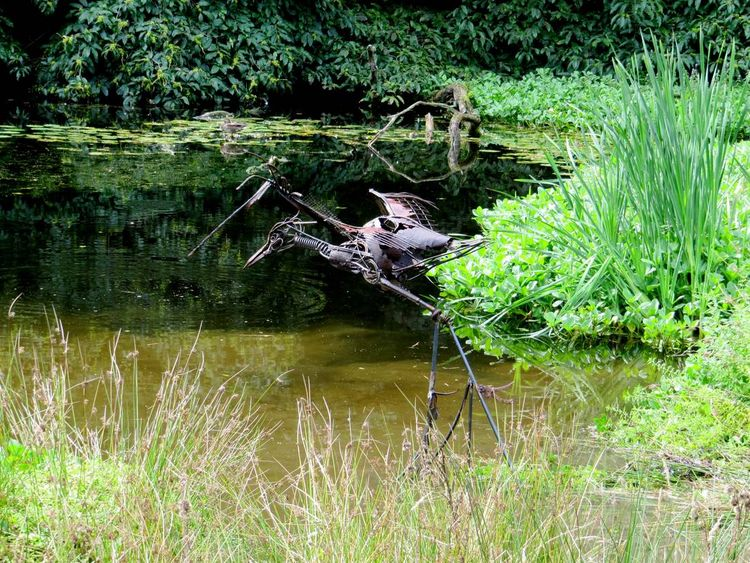 Heron by Fiona Campbell - search and link Sculpture with SculptSite.com